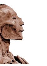 Virus mummificati GdA Maggio-Giugno 2020
